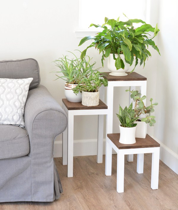 Tiered Plant Stand by Arrow