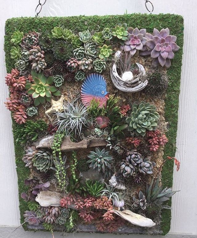 """""""I love my new staple gun!! I tried using a regular craft staple gun on a living succulent wall hardwood frame stapling chicken wire to the frame and I almost crippled my hand for only 2 tries. Got online found this!! It works so GREAT!! I do NOT have to use a hammer to pound the staples in!!""""  and quote from @the_mermaid_garden    Are you ready to go cordless with the T50DCD? Click the link in our bio to discover the tool 98% of people recommend. . . . . . . . ."""